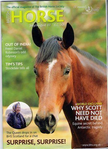 Reggie Horse